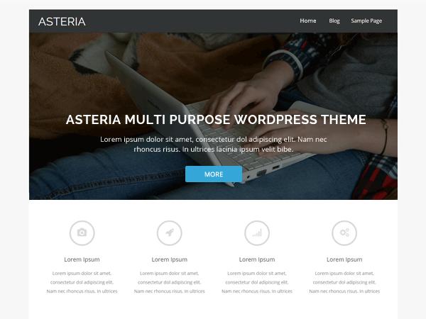 https://themes.svn.wordpress.org/asteria-lite2/3.0.3/screenshot.png