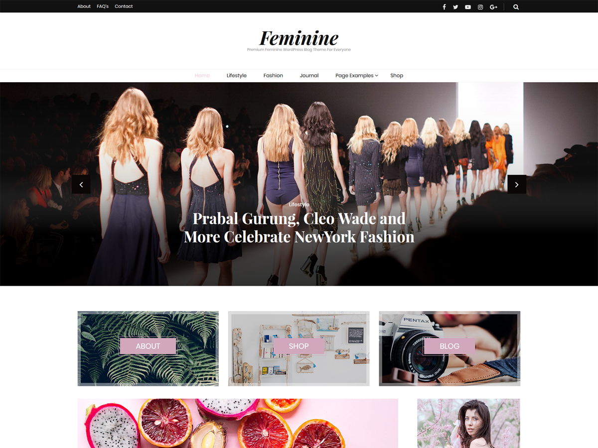 https://themes.svn.wordpress.org/blossom-feminine/1.0.2/screenshot.png