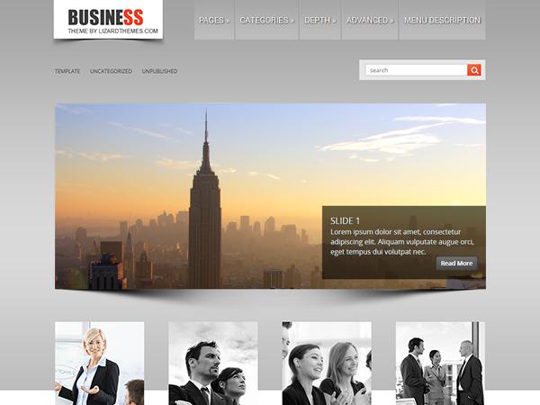 https://themes.svn.wordpress.org/businesslite/1.0.0/screenshot.png