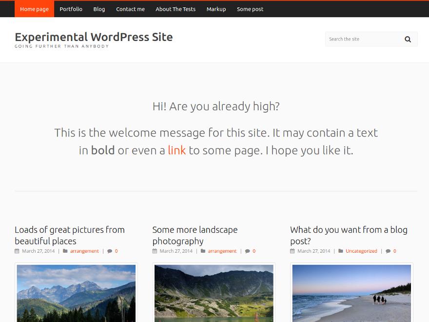 https://themes.svn.wordpress.org/carrot-lite/1.3/screenshot.png