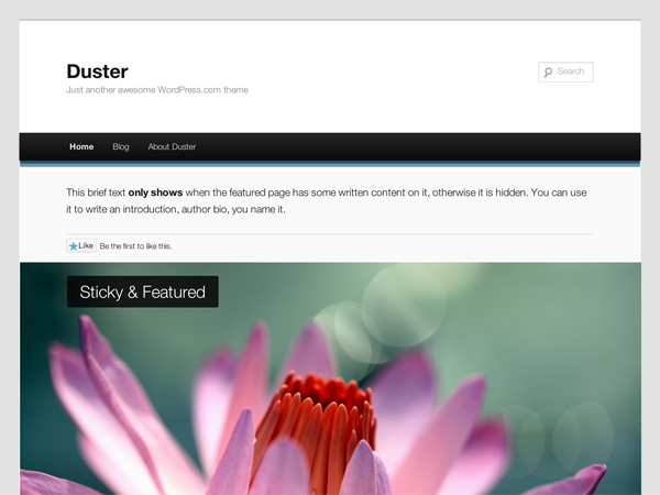 https://themes.svn.wordpress.org/duster/1.1/screenshot.png