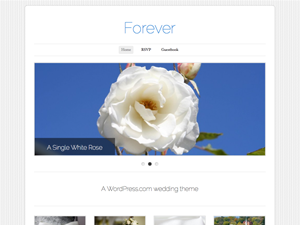 https://themes.svn.wordpress.org/forever/1.0/screenshot.png