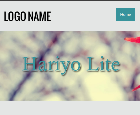 https://themes.svn.wordpress.org/hariyo-lite/1.0.0/screenshot.png