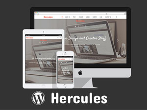 https://themes.svn.wordpress.org/hercules-wordpress-theme-main/1.0/screenshot.jpg