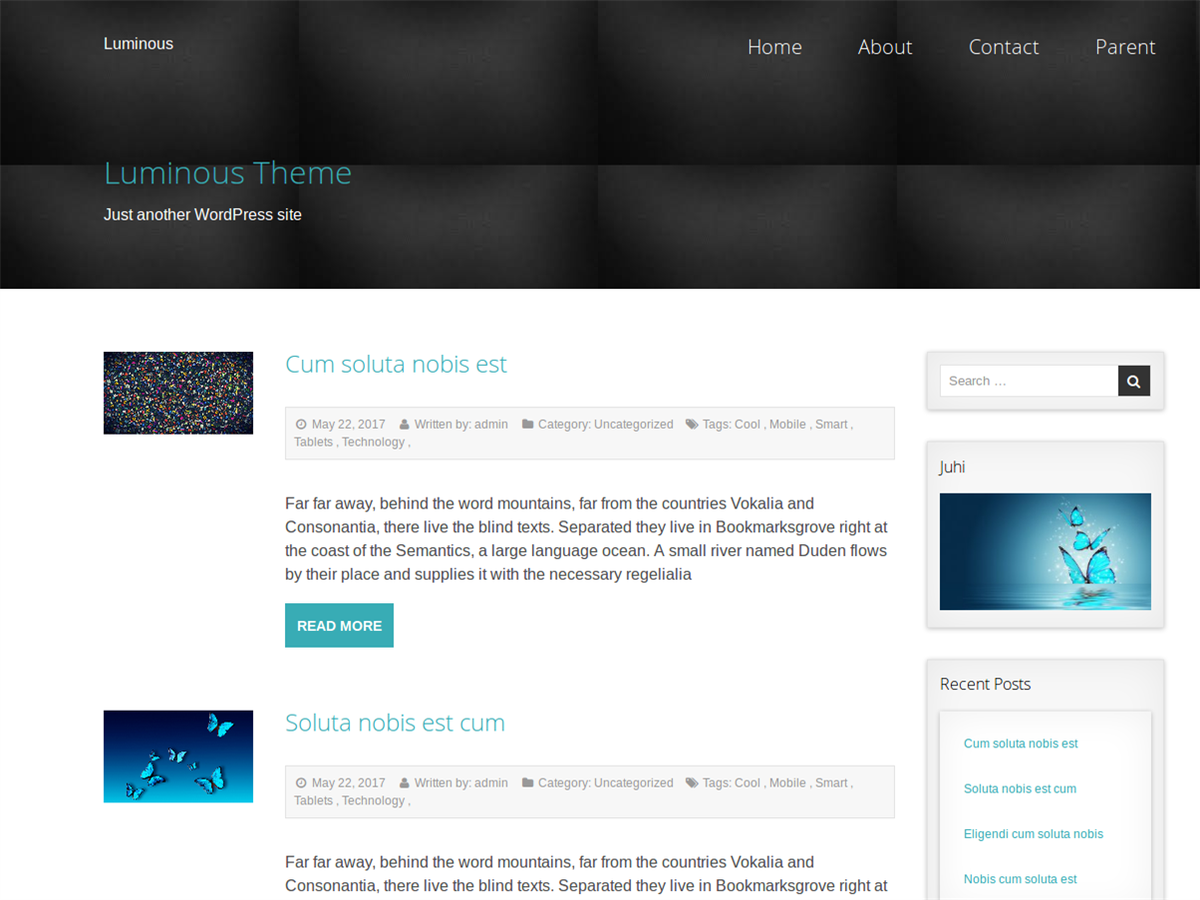 https://themes.svn.wordpress.org/luminous/1.0.1/screenshot.png