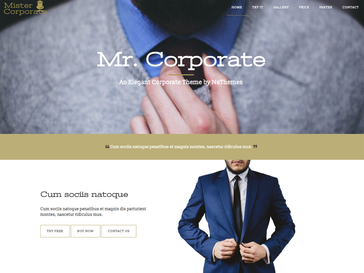 https://themes.svn.wordpress.org/mistercorporate/1.1.7/screenshot.png