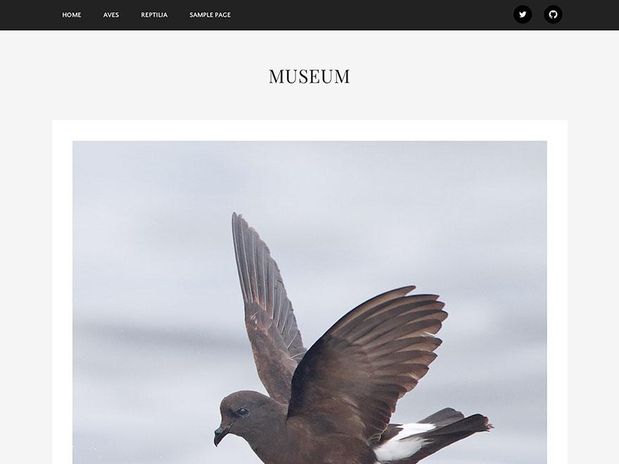 https://themes.svn.wordpress.org/museum/0.1.1/screenshot.png