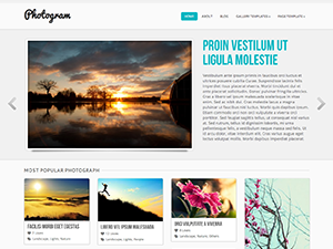 https://themes.svn.wordpress.org/photogram/1.1.6/screenshot.png