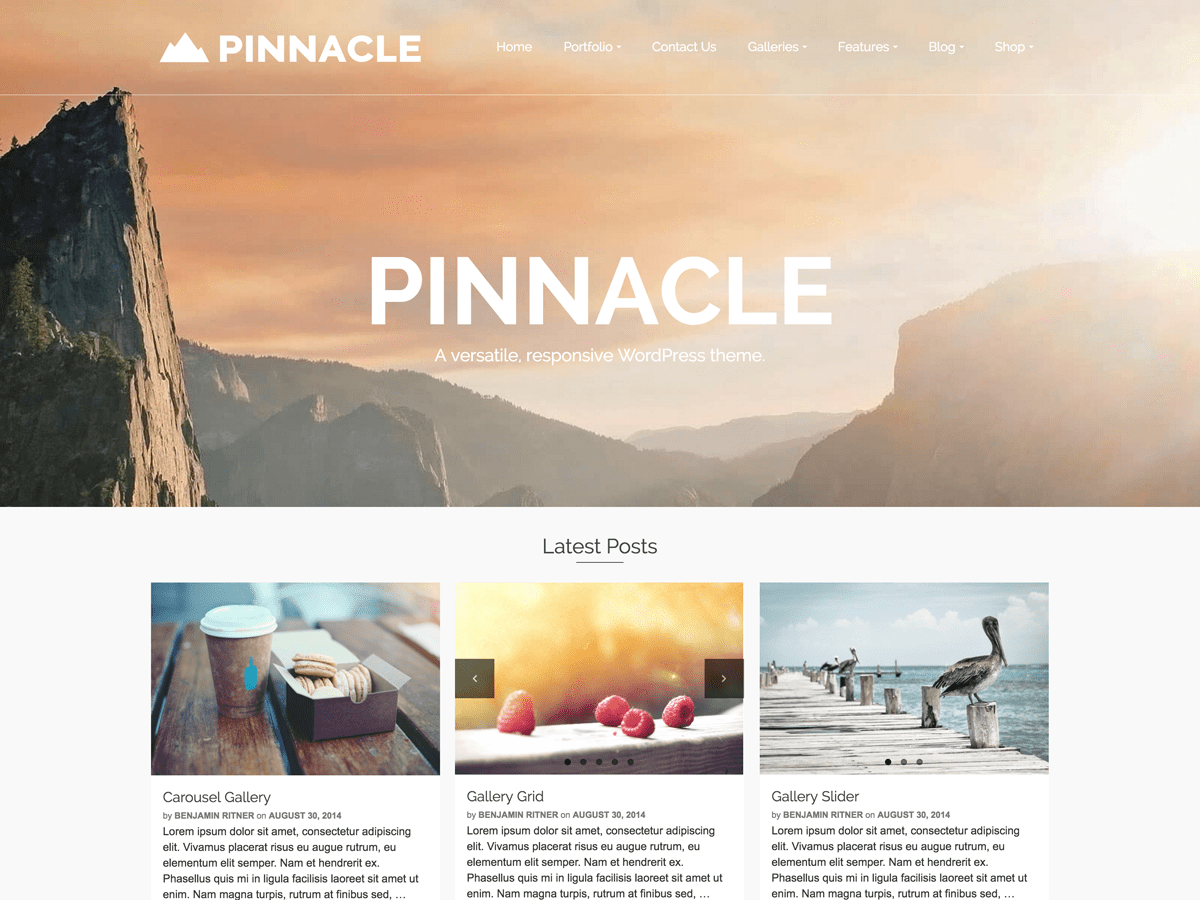 https://themes.svn.wordpress.org/pinnacle/1.5.9/screenshot.png