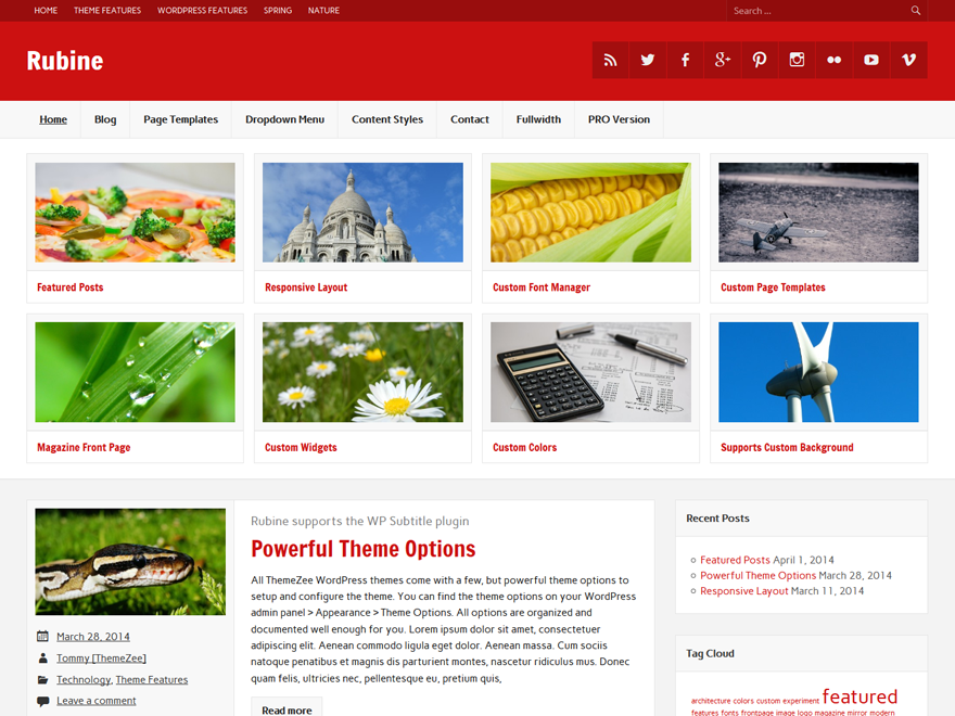 https://themes.svn.wordpress.org/rubine-lite/1.3.3/screenshot.png