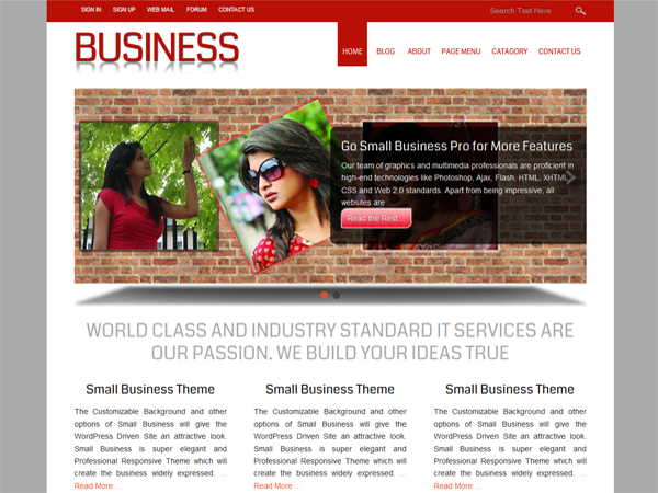 https://themes.svn.wordpress.org/small-business/1.3.02/screenshot.png
