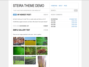 https://themes.svn.wordpress.org/steira/1.1/screenshot.png