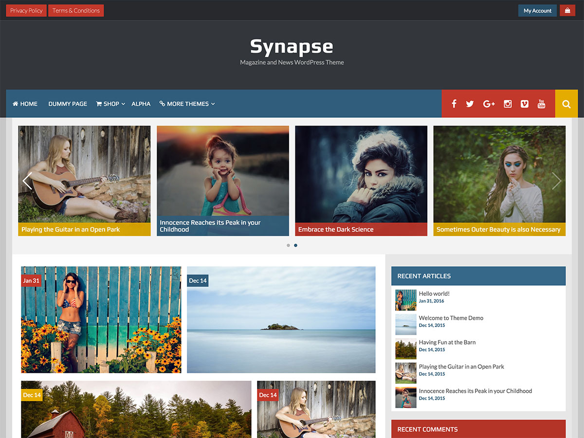 https://themes.svn.wordpress.org/synapse/1.0.5/screenshot.jpg