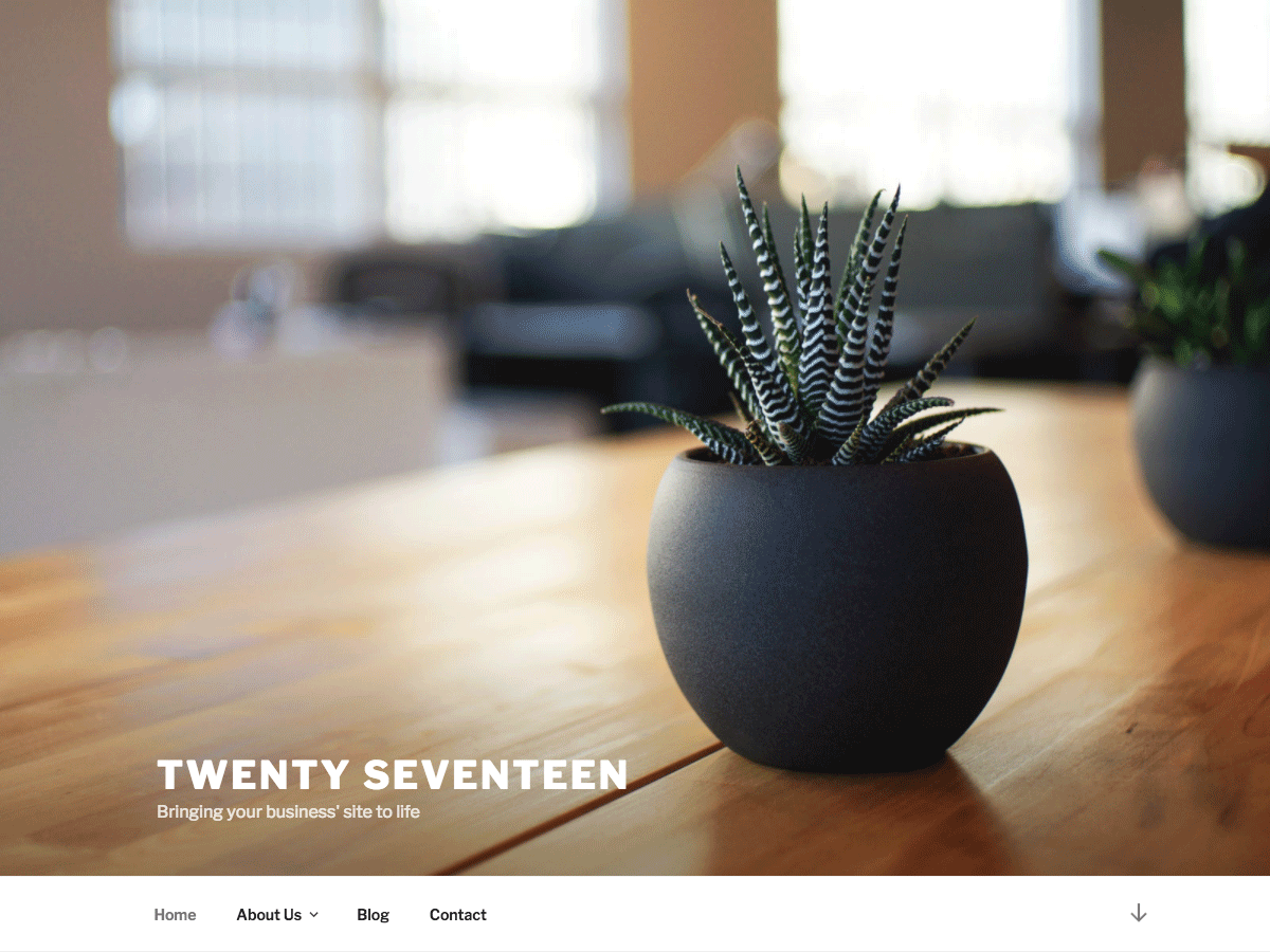 https://themes.svn.wordpress.org/twentyseventeen/1.1/screenshot.png
