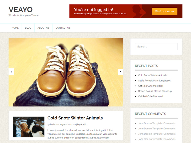 https://themes.svn.wordpress.org/veayo/1.0.5/screenshot.jpg