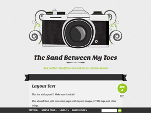 https://themes.svn.wordpress.org/vintage-camera/2.2.1/screenshot.png