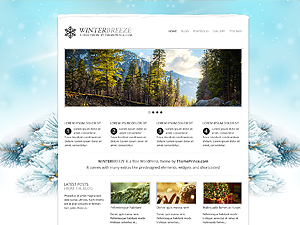 https://themes.svn.wordpress.org/winter-breeze/1.0.0/screenshot.png