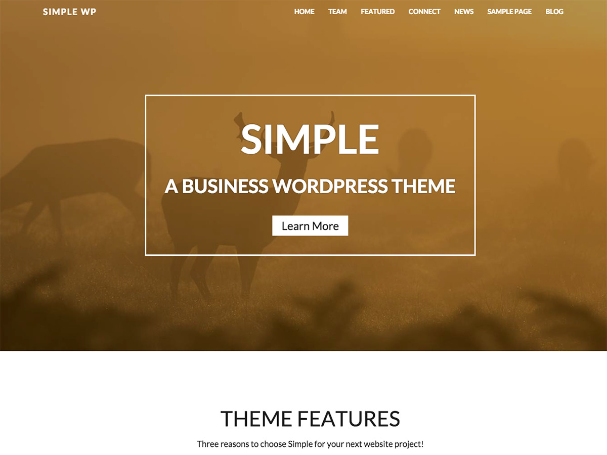 https://themes.svn.wordpress.org/wp-simple-pro/2.0.2/screenshot.jpg